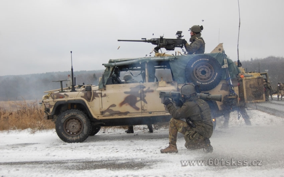 Foto: 601. skupina speciálních sil na cvičení Cobra-13. / 601.skss
