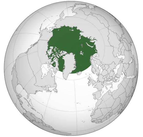 Foto: Arktida / Wikipedia