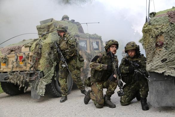 Foto: Vojáci 7. mechanizované brigády na cvičení Allied Spirit II; větší foto / DVIDS