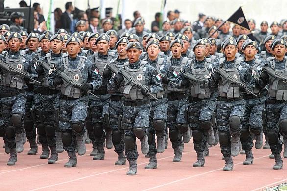 División de Gendarmería de la Policía