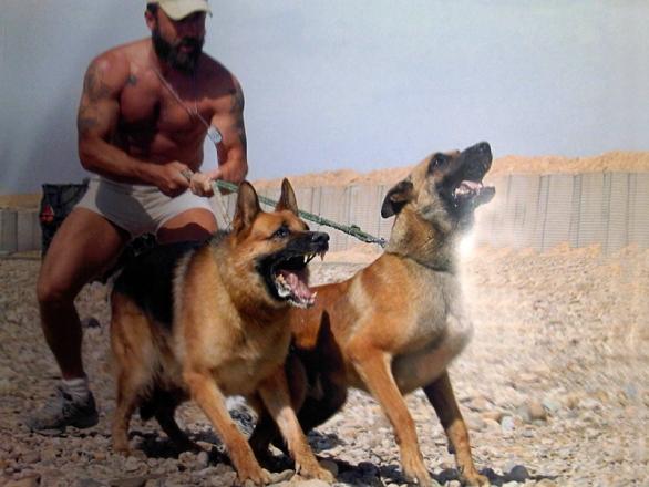 Foto: Bojoví psi jednotky SDAT v Afghánistánu. / SDAT